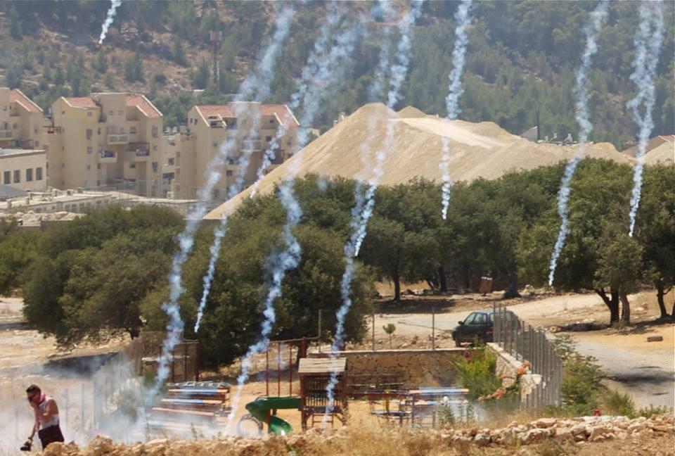 Bil'in Protest Palestine