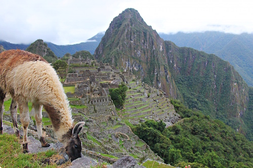 Machi Picchu Solo travel