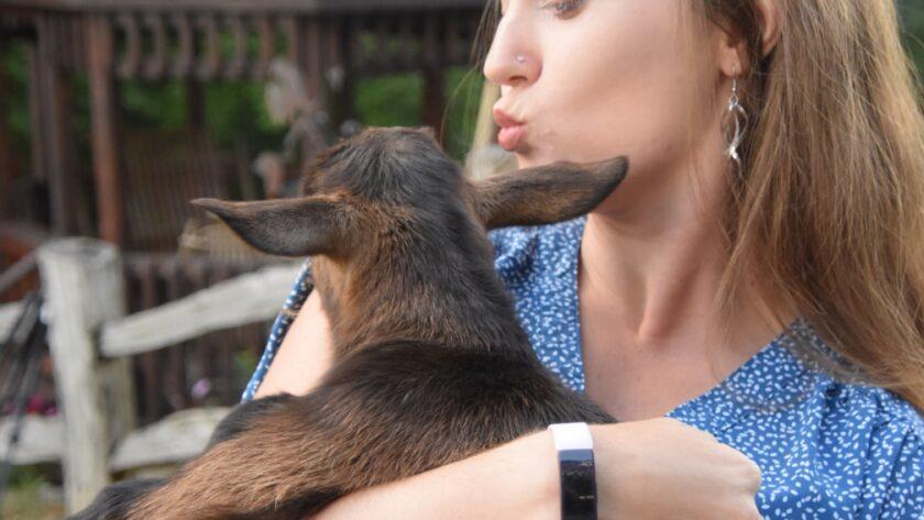 Girl Kissing Goat