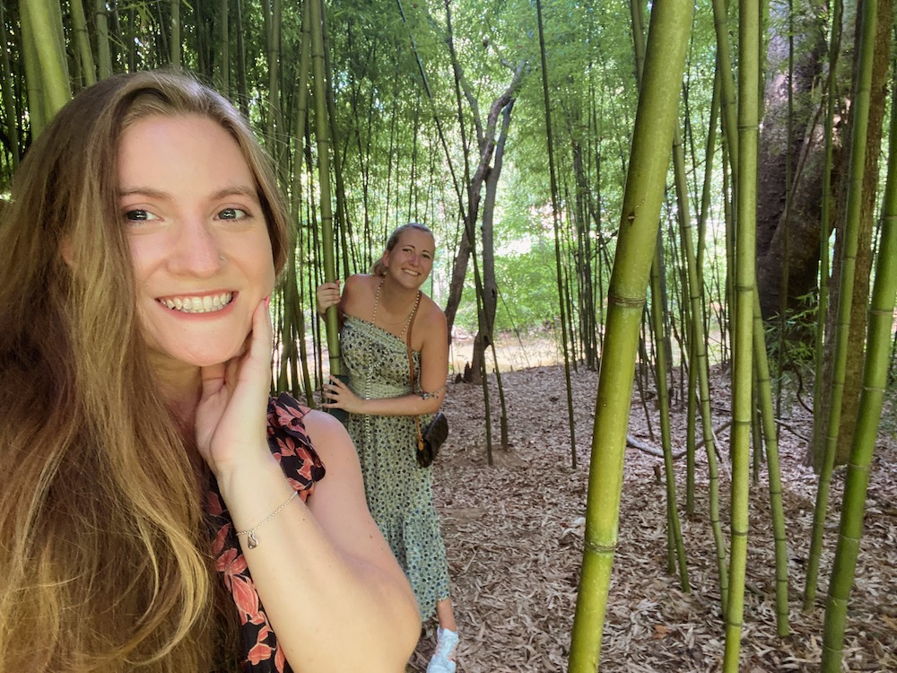 Women in bamboo forest